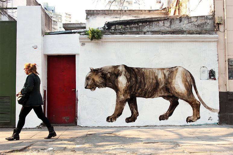 jaz-lion street art buenos aires